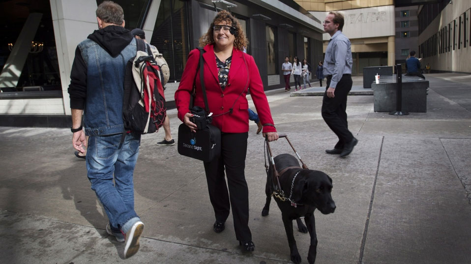 Orly Shamir, a credit analyst, wears the Argus Retinal Prosthesis System (Argus II) while walking her guide dog Francie in Toronto on Tuesday Oct 14, 2014